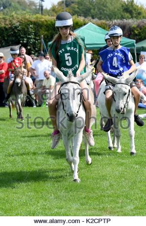 Stubbington, near Fareham, Hampshire is the annual Stubbington Fayre and Donkey Derby which takes place every August - Stock Photo