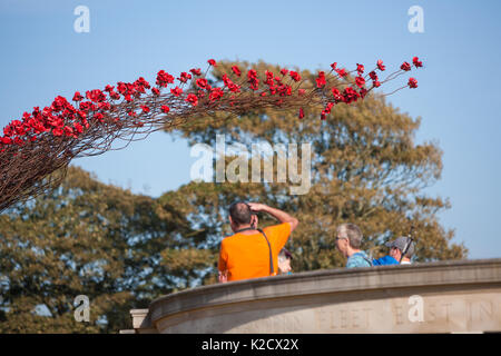 Poppies Wave art installation at Plymouth Naval Memorial. By Paul Cummins Artist and Tom Piper Designer. The Hoe, - Stock Photo