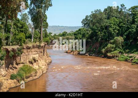 Mara River, Masai Mara National Reserve, Rift Valley Province, Kenya, East Africa, August 2012. - Stock Photo