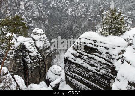 Sandstone rock formations covered in snow, Sachsische Schweiz / Saxon Switzerland National Park, Germany, June 2010 - Stock Photo
