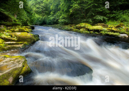 The Strid, River Wharfe, slow shutter speed showing movement of the water, Bolton Abbey Estate, Wharfedale, North - Stock Photo