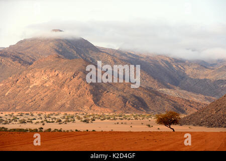 Marienfluss valley during dry season, Kaokoland, at the frontier,  the mountains are Angola, Kunene region, Namibia, - Stock Photo