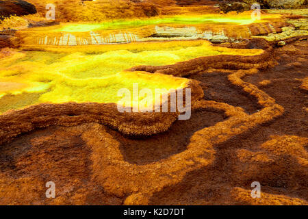 Lakes and sulfur fumaroles with potassium salt mineral deposits, Dallol hydrothermal area of Lake Assale. Danakil - Stock Photo