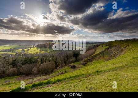 Downham Hill from iron age hill fort at Uley Bury Cotswold escarpment, Gloucestershire, England, UK.  March 2015. - Stock Photo