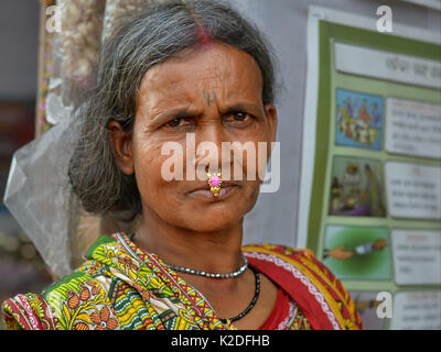 Elderly Indian Adivasi woman (tribal woman) with facial tattoo, tribal side bun and distinctive gold-and-gemstone - Stock Photo
