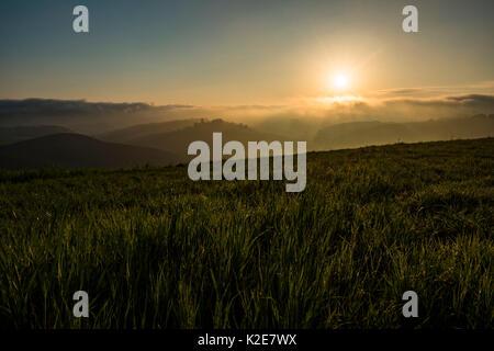 Hilly landscape at sunrise, Crete Senesi, near Asciano, province of Siena, Tuscany, Italy - Stock Photo