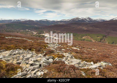 View looking north along Glen Quoich from Creag Bhaig, Mar Lodge, Deeside, Cairngorms National Park, Scotland, UK, - Stock Photo