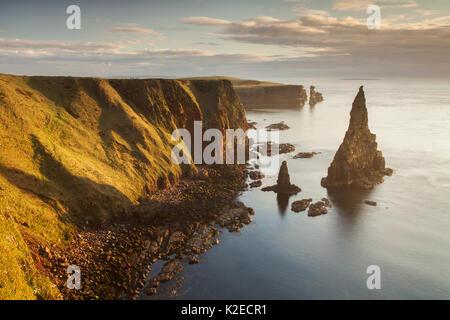 Sea stacks in morning light, Duncansby Head, John O Groats, Caithness, Scotland, UK, April 2015. - Stock Photo