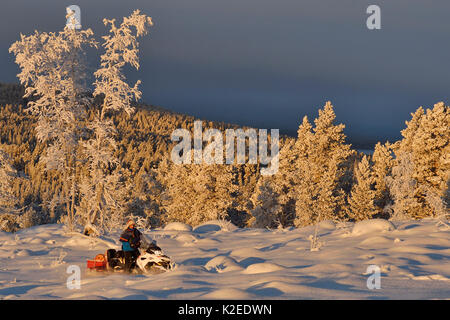 Nils-Torbjorn Nutti, owner and operator at Nutti Sami Siida, on snowmobile trip into the wilderness, Jukkasjarvi, - Stock Photo