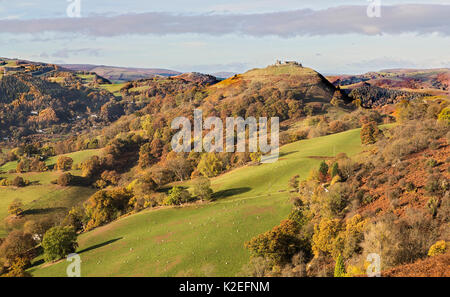 View west from the Panorama walk on the Offa's Dyke path on Ruabon Mountain near Llangollen with Castell Dinas Bran - Stock Photo