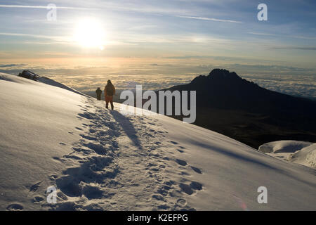 Hiker looking out towards  Mawenzi Peak from Mount Kilimanjaro at sunrise, Tanzania, May 2008 - Stock Photo