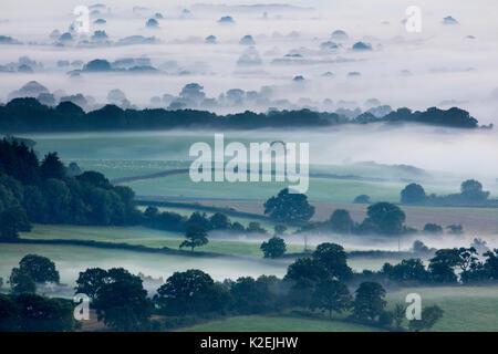 Misty morning in the Blackmore Vale, Dorset, England, UK, September 2015. - Stock Photo