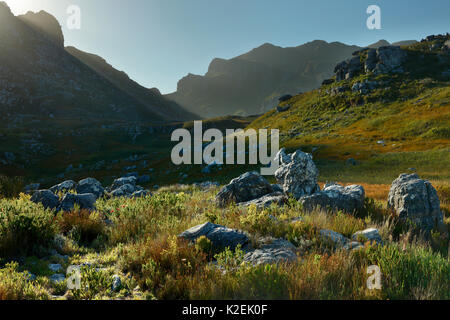 Mountains of Hottentots-Holland, western Cape, South Africa, December 2014. - Stock Photo
