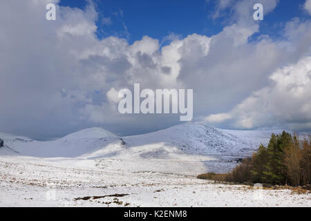 View of Slieve Donard and Rocky Mountains from Annalong Wood, Mourne Mountains, County Down, Northern Ireland, UK. - Stock Photo