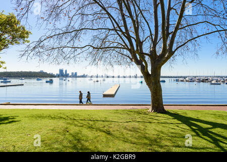 Couple walking their dog along the foreshore of the Matilda Bay Reserve on the Swan River at Crawley, Perth, Western - Stock Photo