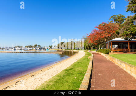 Riverside path and beach along the Matilda Bay Reserve on the Swan River at Crawley, Perth, Western Australia - Stock Photo