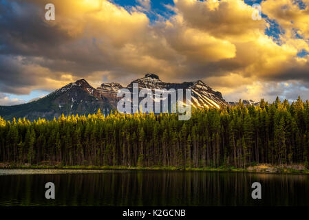 Scenic sunset over deep forest along the Herbert Lake in Banff National Park, with snow-covered peaks of canadian - Stock Photo