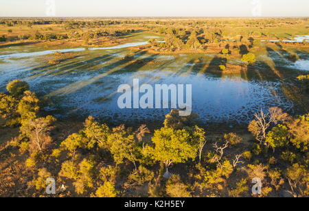 Freshwater marshes with streams, channels and islands, in the late evening, aerial view, Okavango Delta, Moremi - Stock Photo