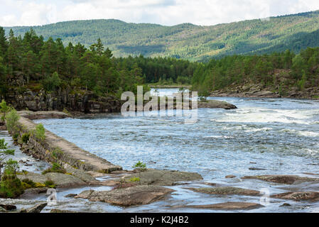 Whitewater on the river Otra in southern Norway. Conifer forest in background. - Stock Photo