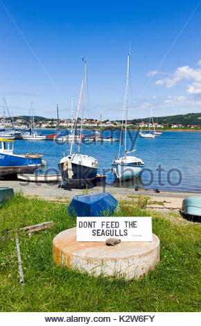 Sign asking the public not to feed the seagulls on Conwy harbour, north wales, UK. Seagulls can be a nuisance to - Stock Photo