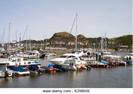 The newly developed marina at Conwy, north Wales, UK, with many sailing yachts and motor cruisers at their moorings. - Stock Photo