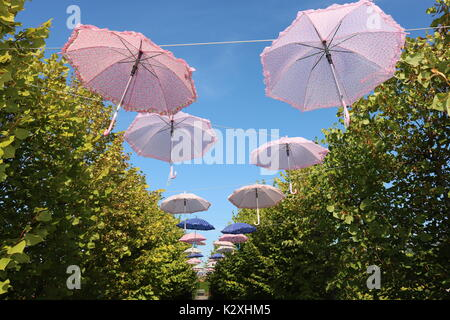 Brightly coloured hanging umbrellas fill the sky above the path.