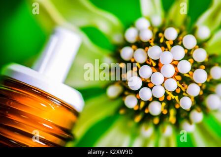 Globuli, homoeopathic medicament, on a blossom, homoeopathisches Arzneimittel, auf einer Bluete - Stock Photo