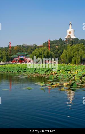 The White Dagoba. Beihai Park.  Beijing.   P.R. of China. On top of the Jade Flowery Islet, the White Dagoba was - Stock Photo