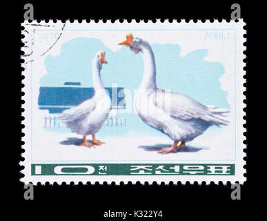 Postage stamp from North Korea depicting geese - Stock Photo