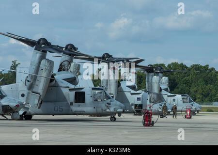 U.S. Marine Corps MV-22B Ospreys with Marine Medium Tiltrotor Squadron (VMM) 162 (REIN). Stock Photo