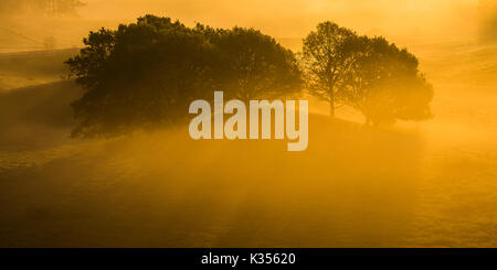 Early morning at sunrise in southern Sweden. The part is called Skåne and the place Österlen or Brösarps Backar - Stock Photo