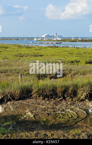 A large cruise liner or ship passing the entrance to Newtown creek on the Isle of Wight with reeds and swamp in - Stock Photo