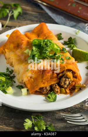 Homemade Beef Enchiladas with Red Sauce and Cilantro - Stock Photo