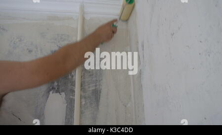 Applying Wallpaper Paste To The Wall With A Roller