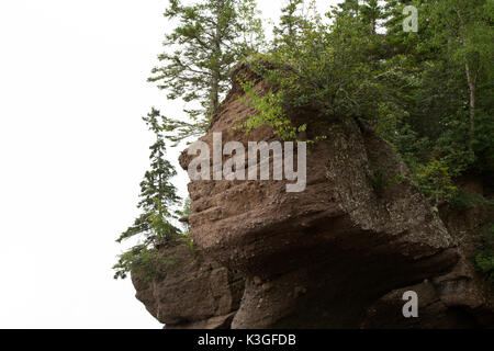 Hopewell Rocks in New Brunswick, Canada. Also known as the Flowerpot Rocks, the rocks are washed by the tidal waters - Stock Photo