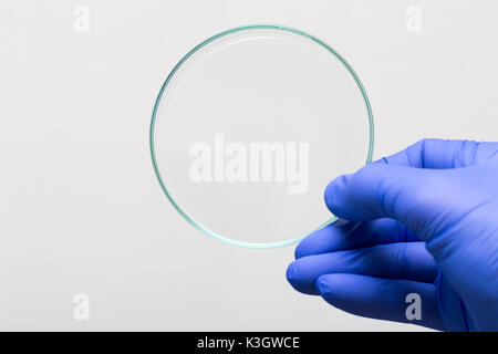 Empty Petri Dish For Growing Cultures Of Microorganisms In Doctor