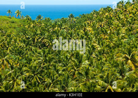The Dominican Republic, peninsula Samana, view of the lookout at the boulevard Turistico del Atlantico on the north - Stock Photo
