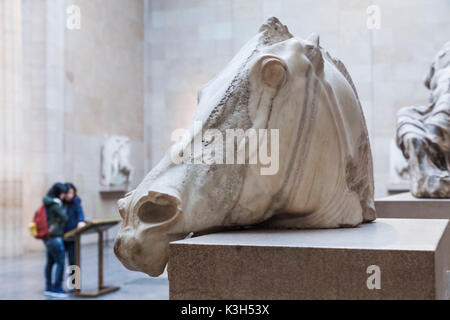 England, London, British Museum, Elgin Marbles, Head of a Horse from The Chariot of The Moon-goddess Selene - Stock Photo