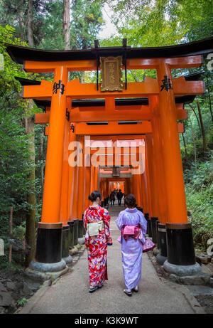 Japan, Kyoto City,Fushimi Inari Shrine, Tori Gates - Stock Photo