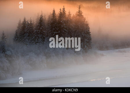 Evening red light mood in the upper reaches of the Isar with some snow-covered spruces and bushes. - Stock Photo