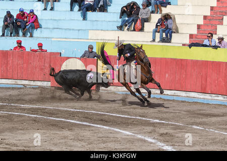 June 18, 2017, Pujili, Ecuador: bullfighter on horseback is getting chased by a bull in the arena - Stock Photo