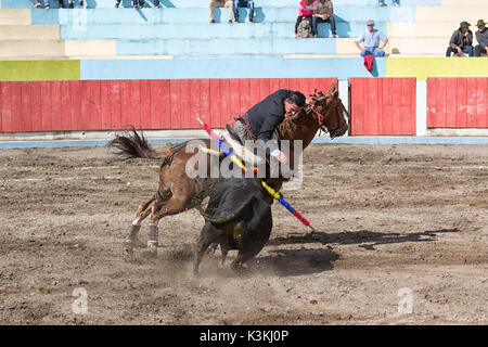 June 18, 2017, Pujili, Ecuador: a bullfighter riding his horse in the arena leaning towards the bull - Stock Photo