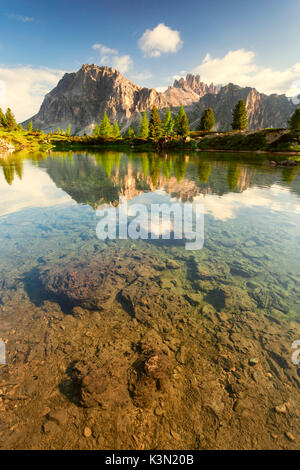 The small alpine lake Limedes in a morning in early summer. Larch and fir trees with their vivid colors stand out - Stock Photo