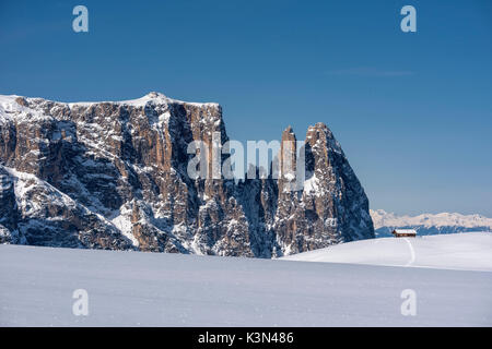 Alpe di Siusi/Seiser Alm, Dolomites, South Tyrol, Italy. Winter landscape on the Alpe di Siusi/Seiser Alm with the - Stock Photo