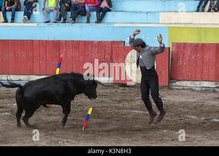 June 18, 2017 Pujili, Ecuador: picador jumps up in the front of the charging bull in the arena - Stock Photo