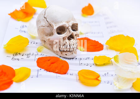 Music abstraction. Autumn texture with white small skull. - Stock Photo