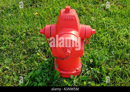 A red fire hydrant against a green lawn - Stock Photo