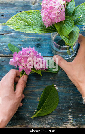 Top view of a woman hands arranging the hydrangeas in a glass jar on a wooden rustic blue table
