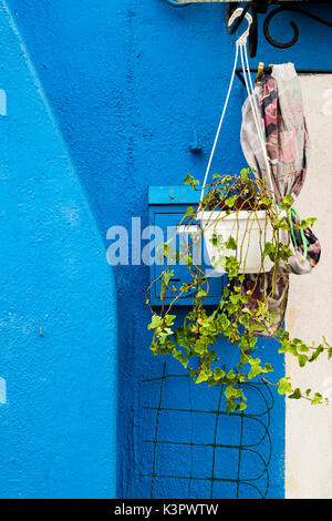 Burano, Venice, Veneto, North East Italy, Europe. Flowers pot out to the door. - Stock Photo