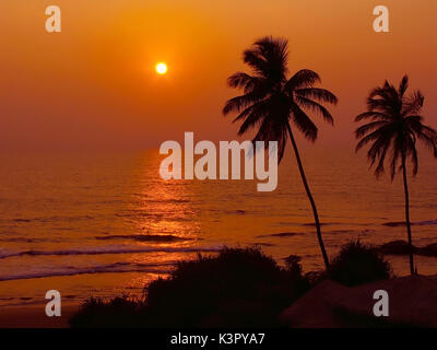 Silhouettes of two tall trees on red backdrop of sunset and ocean, Indian ocean, Bentota, Ceylon, Sri Lanka - Stock Photo